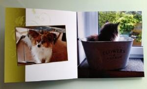 Produkttest Fotobuch
